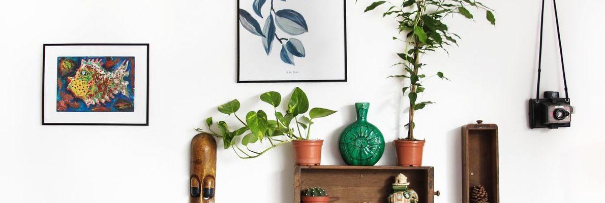 Außergewöhnliche Ideen zur Wandgestaltung - Möbel Lenz
